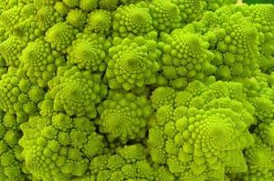 broccolifractal.jpg