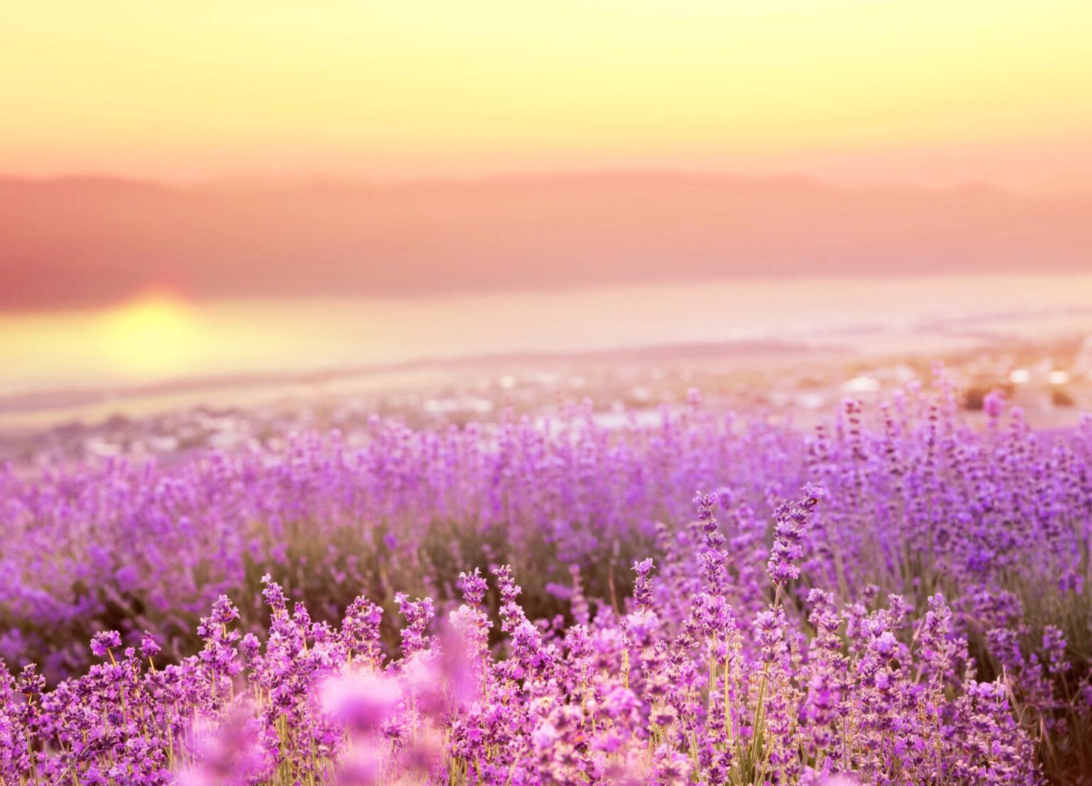 A tudatosság az új illemszabály – a nyári utazások során is!